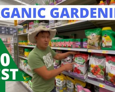 10 Best Organic Vegetable Gardening Products at Walmart