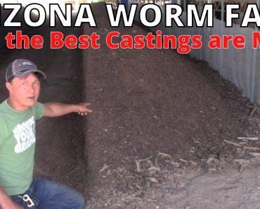 Best Worm Castings in Arizona Made from Food Waste | AZ Worm Farm