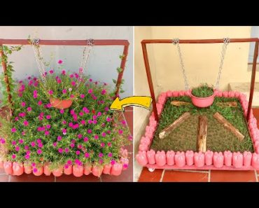 Great Idea to Beautify Front Yard, Colorful Moss Rose Garden for Summer