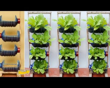 Amazing Vertical Garden from Plastic Bottles, Growing Vegetables at Home