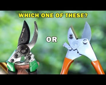 WHICH PRUNER TO CHOOSE AND FOR WHAT? | 8 TYPES OF TRIMMERS OR CUTTING TOOLS FOR YOUR GARDEN